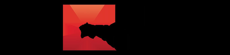 The Stars Group Inline Positive Logo RGB.jpg