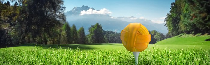 Web page Header Golf 3.jpg